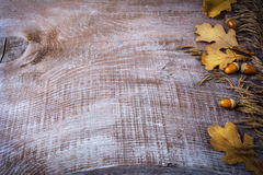 Thanksgiving background with oat, acorn and fall leaves Royalty Free Stock Images
