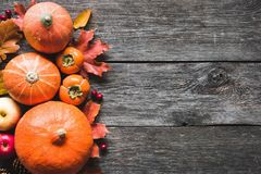 Thanksgiving background with pumpkins, apples and fallen leaves on wooden table. Thanksgiving background: pumpkins, apples, wheat, maple leaves, cones and spices Stock Photography