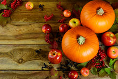 Thanksgiving background with pumpkins, berries and apples Royalty Free Stock Photos