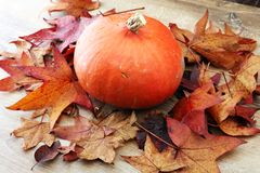 Thanksgiving background: pumpkins and fallen leaves on wooden ba stock photo