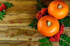 Thanksgiving background with pumpkins and rowan berries Royalty Free Stock Images
