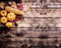 Thanksgiving background. Autumn and Fall harvest season royalty free stock photo