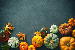 Thanksgiving background with various pumpkins, gourds and fallin Stock Photography