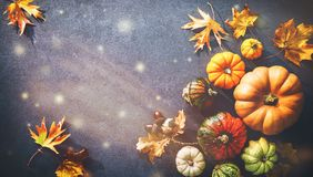 Thanksgiving background with various pumpkins, gourds and falling leaves. On rustic dark table royalty free stock photography