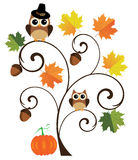 Thanksgiving Background Stock Photos