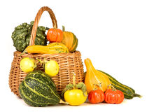 Thanksgiving basket Stock Image