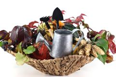 Thanksgiving basket Stock Photo