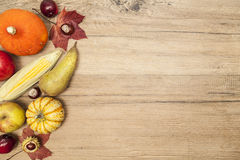 Thanksgiving border design Royalty Free Stock Images