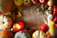 Thanksgiving border  I Royalty Free Stock Photography