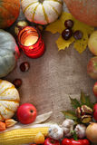 Thanksgiving border Royalty Free Stock Photos