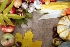 Thanksgiving border Stock Photos