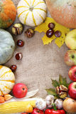 Thanksgiving border Stock Photography