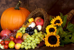 Thanksgiving Bounty Stock Image