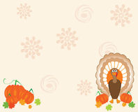 Thanksgiving card Stock Photos