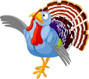 Thanksgiving Cartoon Turkey presenting Stock Photos
