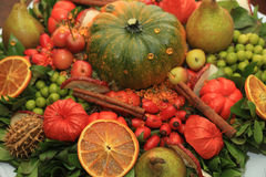 Thanksgiving center piece Royalty Free Stock Images