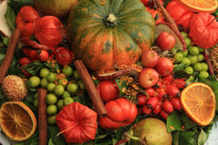 Thanksgiving center piece Stock Images