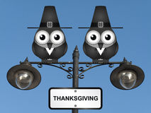 Thanksgiving. Comical Pilgrim Father birds perched on a lamppost against a clear blue sky Stock Images