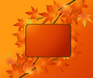 Thanksgiving Concept Royalty Free Stock Images