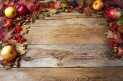 Thanksgiving concept with apples, acorns, berries and fall leave Royalty Free Stock Photos