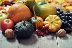 Thanksgiving concept. Fresh ripe pumpkins, apples, grape and nuts over wooden background Stock Image
