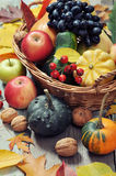 Thanksgiving concept Stock Images