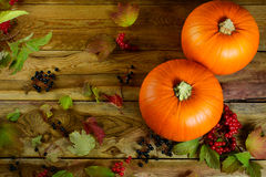 Thanksgiving concept with pumpkins, berries and apples Royalty Free Stock Images