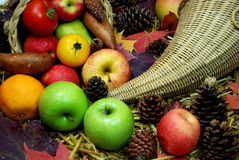 Thanksgiving cornucopia. Of assorted fruit, vegetables, leaves, pine cones Stock Images
