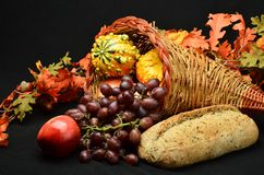Thanksgiving Cornucopia. Beautiful array of fruits and vegetable for the autumn sean and Thanksgiving Royalty Free Stock Photo