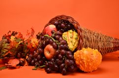 Thanksgiving Cornucopia. Beautiful array of fruits and vegetable for the autumn sean and Thanksgiving Royalty Free Stock Images