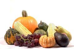 Thanksgiving cornucopia stock photo