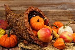 Thanksgiving cornucopia against rustic wood. Thanksgiving cornucopia filled with pumpkins and fruit against a rustic wooden background Royalty Free Stock Photography