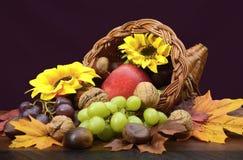 Thanksgiving Cornucopia Centerpiece Royalty Free Stock Photos