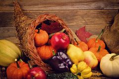 Thanksgiving cornucopia close up against wood. Thanksgiving cornucopia close up against a rustic wooden background Royalty Free Stock Photo