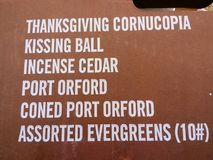 THANKSGIVING CORNUCOPIA - Kissing Ball - Incense Cedar - Port Orford. A box shows the contents of a Thanksgiving Cornucopia including Assorted Evergreens Royalty Free Stock Photo