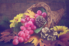 Thanksgiving cornucopia on wood background. Autumn background with traditional Thanksgiving cornucopia on dark wood table, with added retro vintage style Royalty Free Stock Photo