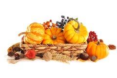 Thanksgiving dans le panier de rotin photographie stock