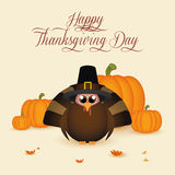 Thanksgiving day. Abstract thanksgiving day background with special allusive objects Royalty Free Stock Photo