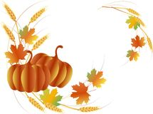 Free Thanksgiving Day Angled Pattern From Pumpkins, Maple Leafs, Wheat Royalty Free Stock Photo - 79433415