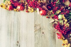 Thanksgiving day autumn background with seasonal autumn nature berries, pumpkins, apples and flowers. On the wooden background Royalty Free Stock Photo