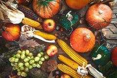 Autumn fruitsetting Royalty Free Stock Image