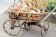 Thanksgiving Day. Autumn holiday. Harvesting. Multi-colored pumpkins on an old wooden cart stock image