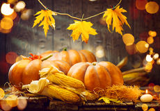 Thanksgiving day Autumn Thanksgiving-pompoenen royalty-vrije stock afbeelding