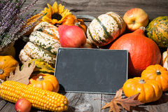 Thanksgiving day autumnal still life Royalty Free Stock Photo