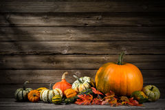 Thanksgiving. Day autumnal still life with pumpkins on old wooden Stock Image