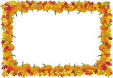 Thanksgiving day autumnal vector frame Royalty Free Stock Images