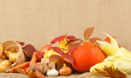 Thanksgiving day background Royalty Free Stock Photo