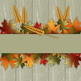 Thanksgiving day background Royalty Free Stock Images