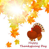 Thanksgiving Day background Royalty Free Stock Image