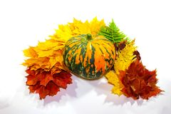 Thanksgiving Day. Thanksgiving banner with autumn leaves and pumpkin. Fall of the leaves of the border, on a light background Stock Photo
